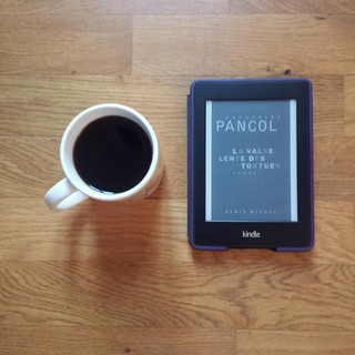 La valse lente des tortues de Katherine Pancol