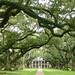 Oak Alley Plantation by Scott Beveridge