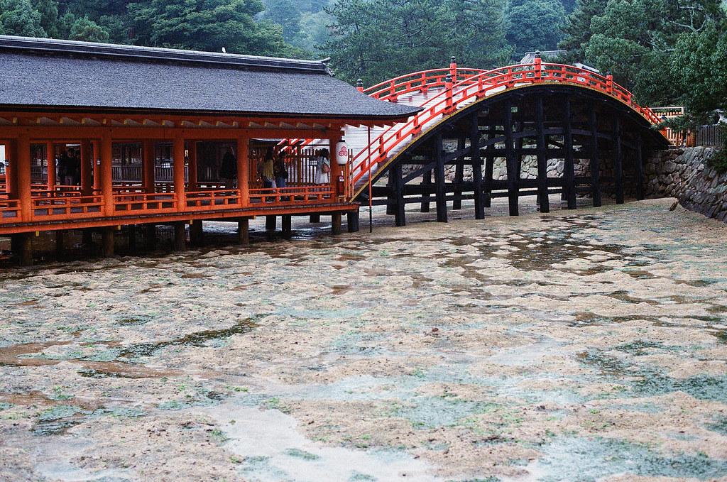 厳島神社 嚴島(Itsuku-shima)広島 Hiroshima 2015/08/31 快到出口的地方,但這座橋很陡。  Nikon FM2 / 50mm Kodak UltraMax ISO400 Photo by Toomore