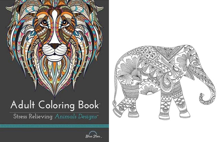 11 Beautiful Adult Coloring Books