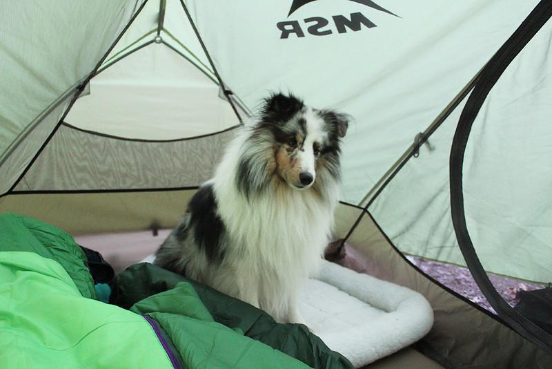 Camping Nisu