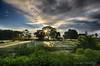 Morning Rays by Gourab Mukherjee