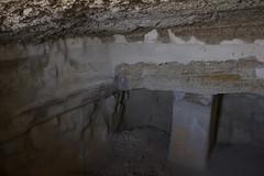 Dead Sea & Masada049