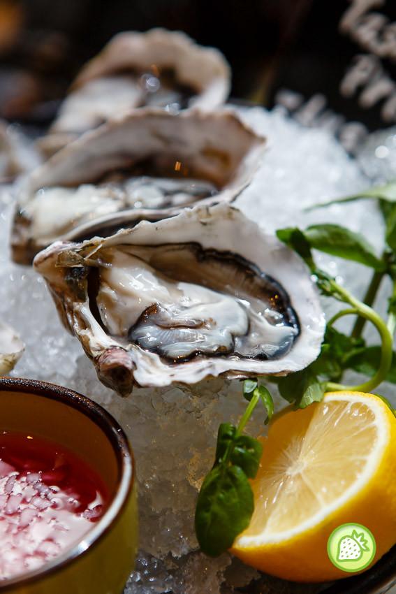 charcoal - saujana(oyster)