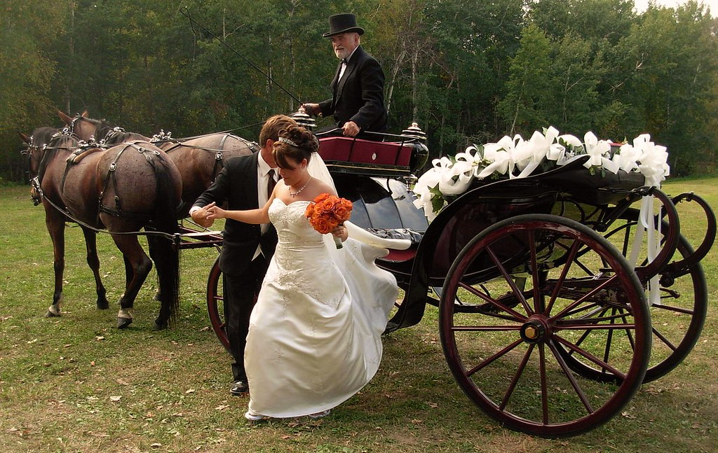 Bride in a white dress descends from an open horse-drawn carriage decorated with ribbons at a wedding in Minnesota. Credit Jonathunder
