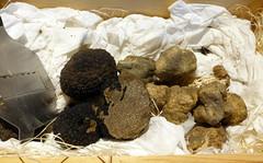 Look into the Truffles Box @ Ristorante Cristina's