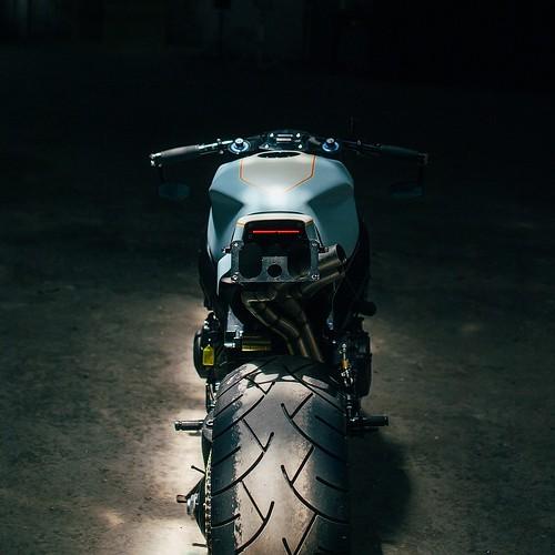 Honda CBR954RR Angry Bird