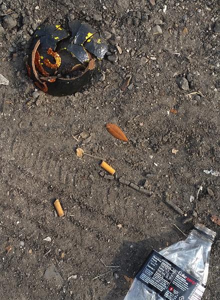 Mardi Gras Wreckage