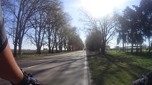 Ciclismo - 138,76 km - Salida Club F.A.R. y Carcaraña (119)