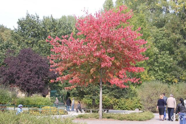 Sonntags-Besuch im Tierpark Friedrichsfelde 04.10.201556