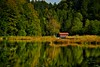 Reflecting Lake
