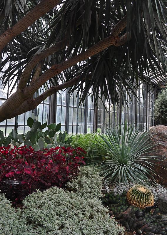 Conservatory - Silver Garden (3)