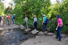 BUC Walking Group in Sturt Gorge, 27 Sep 2015