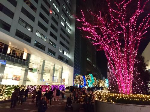 Shinjuku Southern Terrace 04