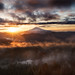 Mt Hood Sunrise - Larch Mountain by seanhaselden