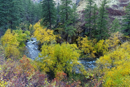 autumn canyon idaho landscape nationalforest nationalwildandscenicriver river sevendevilsmountains usa riggins