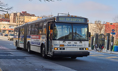 Bee Line Neoplan at Fordham