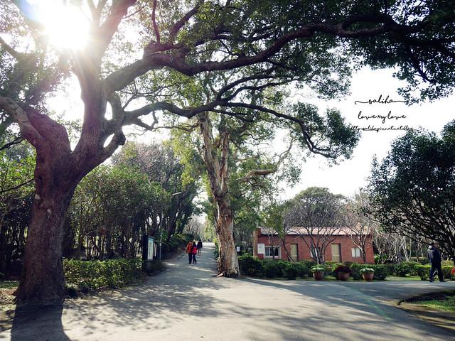 陽明山一日遊免門票景點花卉試驗中心 (2)