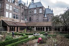 Het Romaanse Pandhof - Utrecht