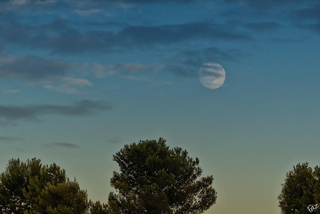 Blue moon 20590324445_360052843b_b