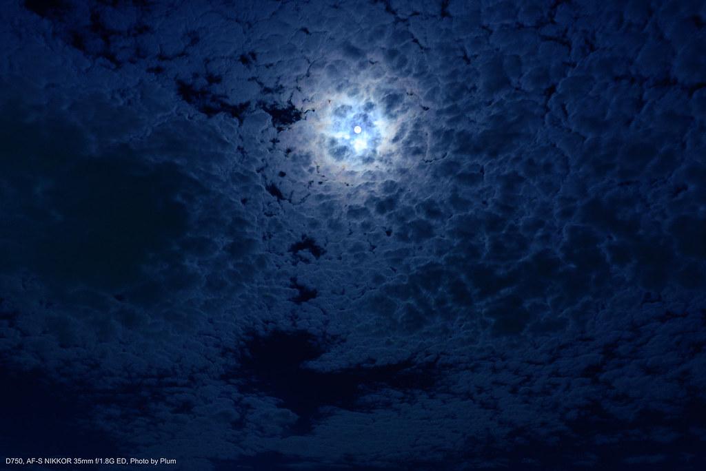 月夜の空に