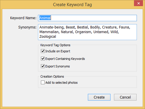 lr-create-keyword-tag-dialog-box