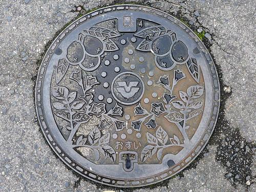 Akitsu Hiroshima, manhole cover (広島県安芸津町のマンホール)