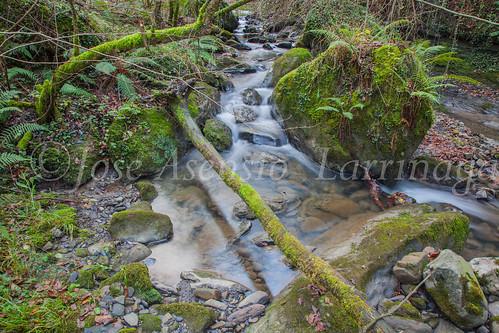 Agua , efecto seda #DePaseoConLarri #Flickr -3733