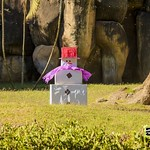 Navidad en el Zoológico La Aurora » ¡Algunos de los habitantes del zoológico recibieron un regalo navideño este año! Fotos: Juan Diego González