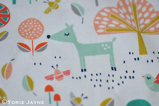 Dashwood Studio Fablewood Fabric