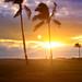 Hawaii-2099