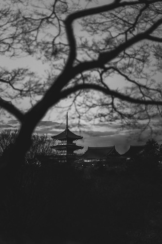 japan japon kiyomizudera tree arbol landscape paisaje kyoto sunset atardecer