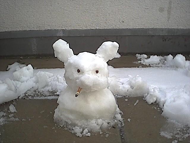 Schneehase 003 | Flickr - Photo Sharing!