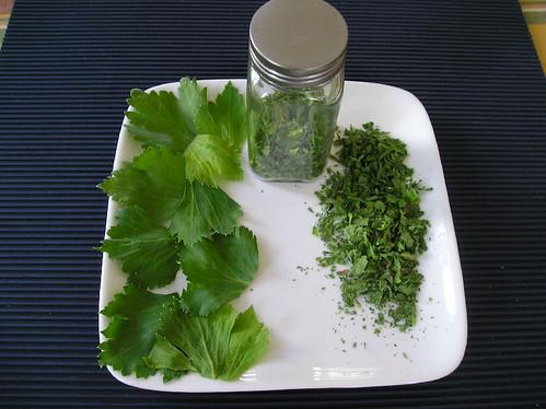 Les cinq sens conservation feuilles de c leri - Que faire avec les feuilles de celeri ...