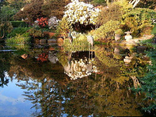 park reflection 2004 water oregon garden coast pond state hiking shore pete 500views acres thecontinuum aplusphoto favoritegarden pete4ducks peteliedtke