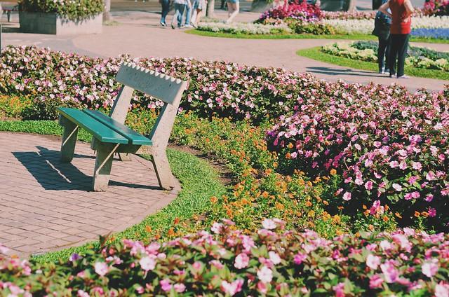 Praça das Flores, Nova Petrópolis - RS {agosto 2015}