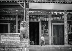 A Walk to the Temple