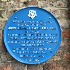 Photo of Blue plaque number 11018