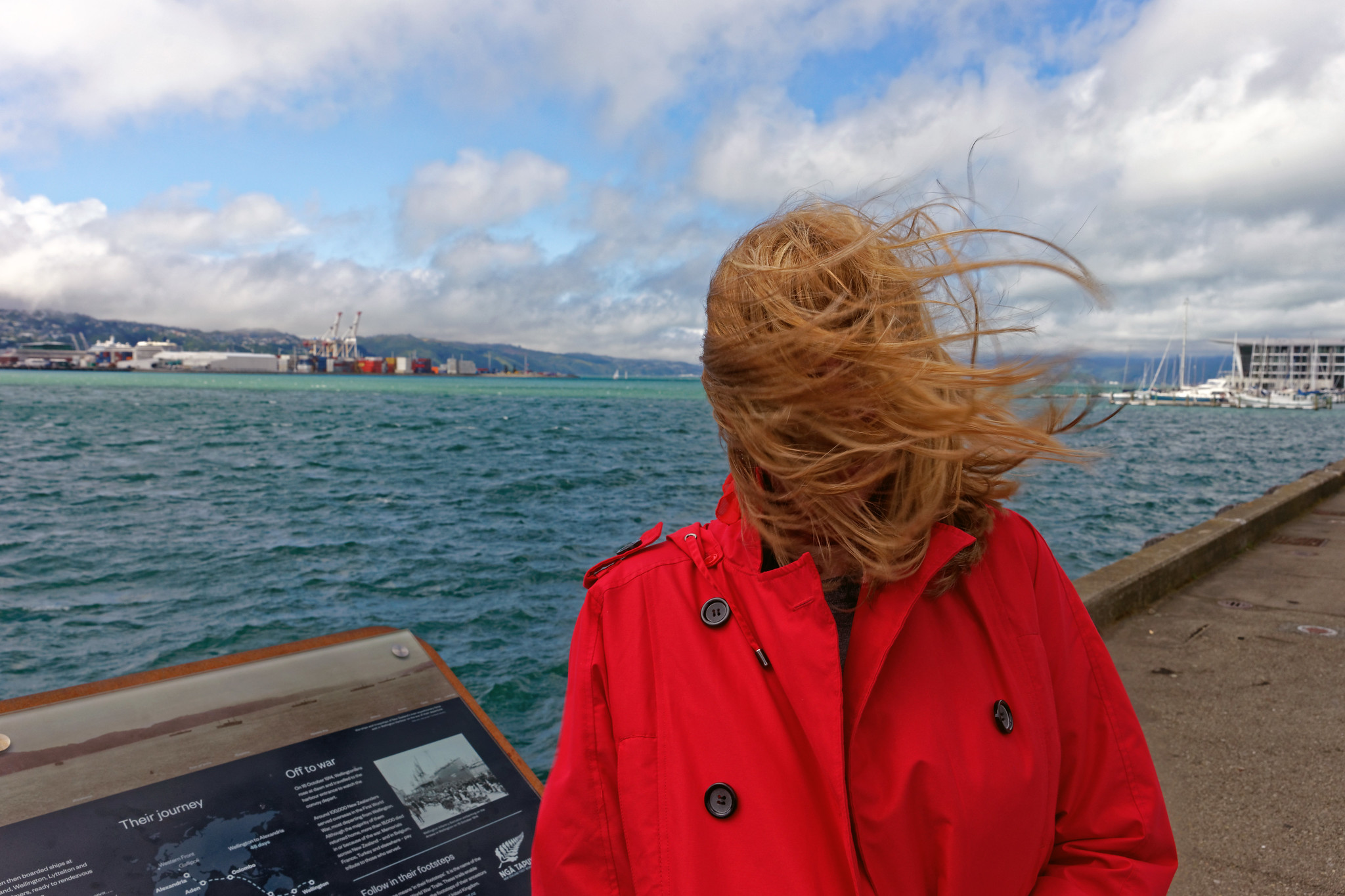 Windy Welly