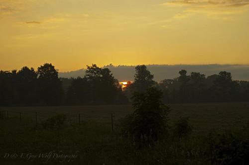 morning rural farm