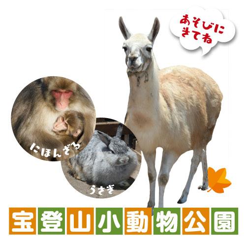 長瀞宝登山小動物公園
