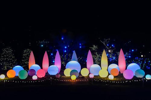 Phipps Conservatory Light  Garden.