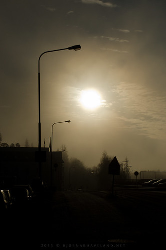 Misty Morning (ii)