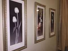Elves in Disguise 2015: Living Room Art