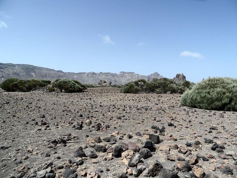 PN. Cañadas del Teide 20223538573_560b6df770_c