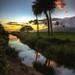 Maui Sunset by Hot Flash Photography