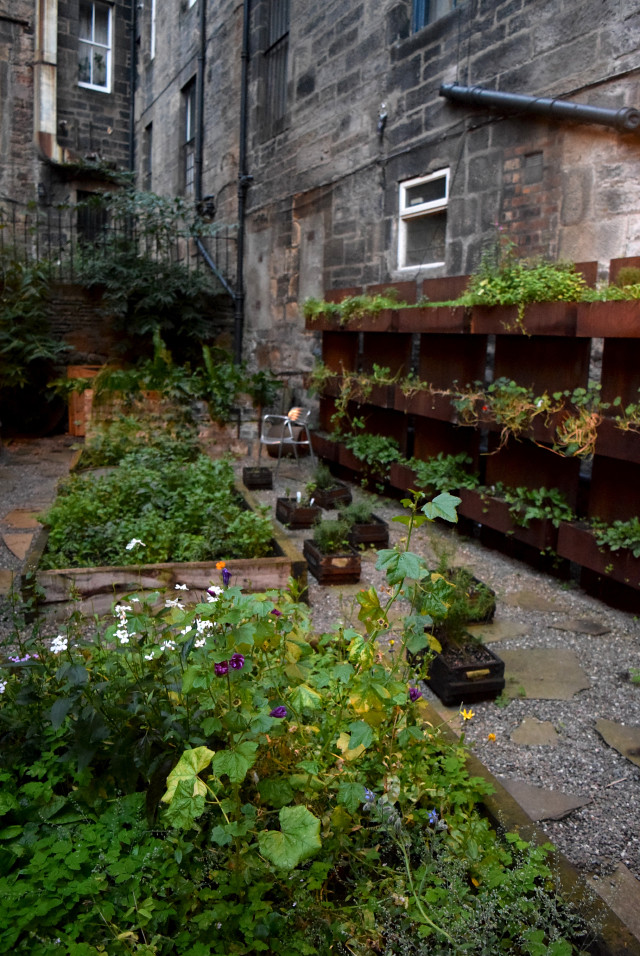 Herb Garden at Timberyard, Edinburgh