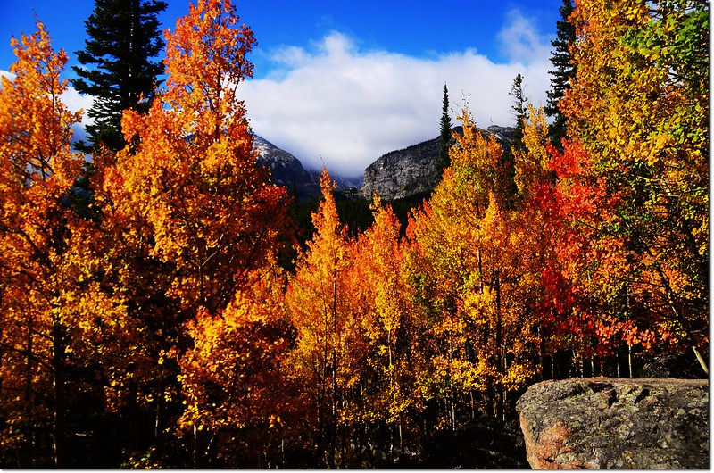 2015 Rockies in Fall, Bear Lake Area (6)