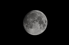 Moon Nov 2015