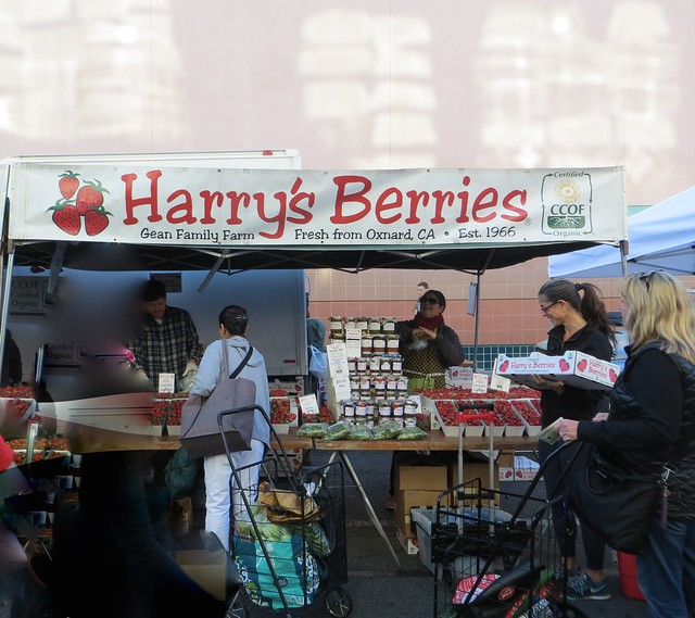 Harry's Berries